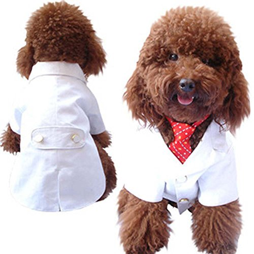 Red Tuxedo Kostüm - SKJIND Puppy Wedding Suit Clothes,Thick White Dog Tuxedo Costumes with Red Bowtie Formal Party Outfits,fit Maltese, Miniature Pinscher, Toy Poodle (XL)