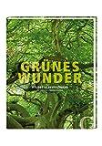 Grünes Wunder: Wälder in Deutschland - Uta Henschel, Thomas Stephan
