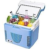 10 litros refrigerador portátil del coche nevera caja de doble uso de congelador caliente / frío viajes de verano en coche suministros