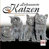Liebenswerte Katzen (Geschenkbücher)