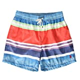 Polo Ralph Lauren Traveler Short Badehose Swim Shorts M Watercolor Stripe (001)