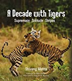 #9: A Decade with Tigers: Supremacy · Solitude · Stripes