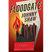 Floodgate (English Edition)