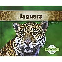 Jaguars (Abdo Kids: Big Cats)
