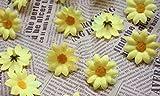 RICISUNG 100pcs Artificial Gerbera Daisy Silk Flowers Heads for DIY Wedding Party