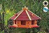 BTV Ölbaum MASSIVHOLZ Massivholz-Vogelhaus Hellbraun/orange + 3X Landestation rot, groß, XXXL mit Anflugbrett/Landebahn + LED - Beleuchtung/Licht, Massivholz,wetterfest, mit Silo/Fu