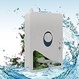 Generatore Di Ozono Ozonizzatore - Purificatore D'aria | Sterilizzatore Detergente Per Acqua, Verdure, Frutta E Più600mg / H,M