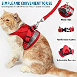 Idepet Cat Harness and Leash for Walking Adjustable Soft Mesh Vest Harnesses