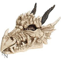 Nemesis Now - Figura decorativa con forma de calavera de dragón