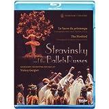Stravinsky et les ballets russes le sacre du printemps. l'oiseau de feu