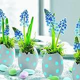 20 Servietten Easter Breakfast - Hyazinthen als Osterdeko / Frühling / Ostern 33x33cm