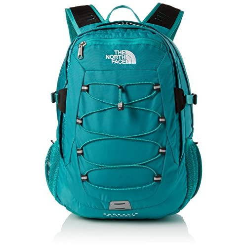 516rbRDwauL. SS500  - The North Face  Borealis Men's Outdoor Backpack