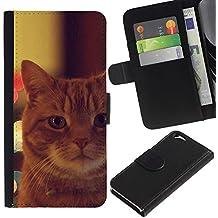 EuroCase - Apple Iphone 6 4.7 - garfield ginger orange mongrel cat - Cuero PU Delgado caso cubierta Shell Armor Funda Case Cover