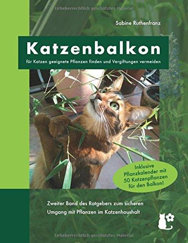 Katzenbalkon: für Katzen geeignete Pflanzen finden und Vergiftungen vermeiden (Katzenpflanzen)