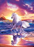 Fototapete FREE SPIRIT 183x254cm Strand Schimmel Fantasy Gemälde Wasser Pferd