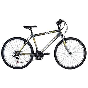 516ryhm73UL. SS300 F.lli Schiano Integral Cambio Power 18V Bicicletta
