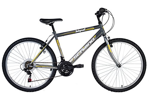 F.lli Schiano Integral Cambio Power 18V Bicicletta, Antracite/Grigio, 24