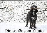 Die schönsten Zitate (Wandkalender 2019 DIN A3 quer): Zitatekalender mit einzigartigen Fotografien von Clarissa Itschert (Monatskalender, 14 Seiten ) (CALVENDO Natur)