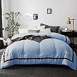 SBD Premium de Luxe Daunendecke Bettwäsche Daunendecke Hypoallergen Leichter Bettbezug mit Ecklaschen All Seasons Down-Blau_200 x 230 cm daunendecke 135x215 warm