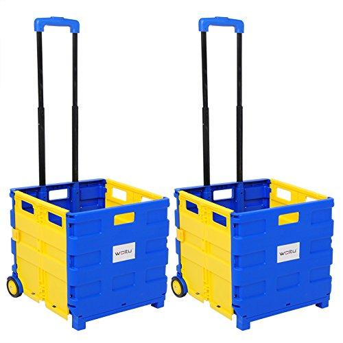 WOLTU EW4805gb-2 Carrello con Coperchio per la Spesa Shopping Campeggio Trasporto Trolley Portaspesa Pieghevole Plastica 2 Pezzi