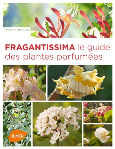 "<a href=""/node/4384"">Fragrantissima</a>"