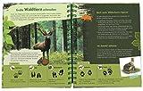 Expedition Natur: Das Wald-Forscherbuch - Bärbel Oftring
