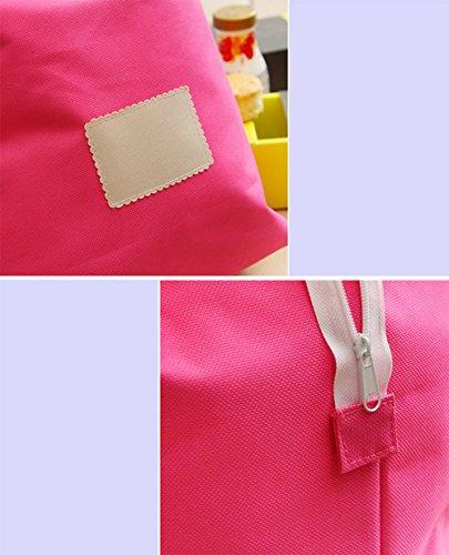 Demarkt Kleine Einkaufstasche Handtasche Lunchtasche aus Oxford Rose Rot 26*26*16cm Hellblau