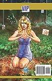 Fame Taylor Swift: La biographie de Taylor Swift en B.D.
