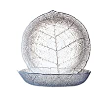 Luminarc 10365 Aspen Lot de 6 Assiettes Creuses 20,5 cm Verre Transparent
