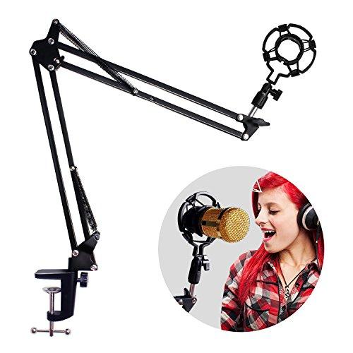 Mikrofon Arm Stand,2 KG Tragenden Einstellbar Mikrofon Ständer Popschutz für Studio Programm Aufnahme Rundfunk Fernsehsender Schwarz(kein Mikrofon)