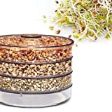 DFS Hygienic, Healthy and Effective Plastic Sprout Maker 4 Containers, Small, Clear