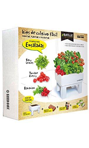 Huerto Urbano - Seed Box Ensaladas - Batlle