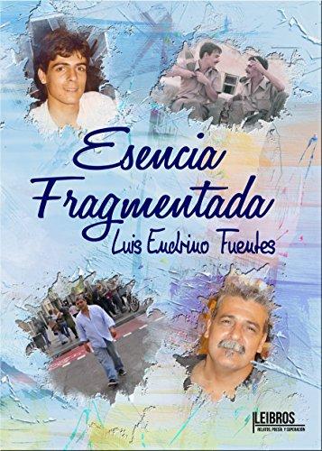 Esencia Fragmentada por Luis Endrino  Fuentes