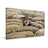 Premium Textil-Leinwand 120 cm x 80 cm quer, Der Wolf im Schafspelz   Wandbild, Bild auf Keilrahmen,...