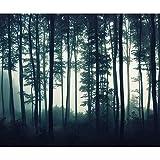 decomonkey Fototapete Wald 400x280 cm XL Tapete Wandbild Wandbild Bild Fototapete Tapeten Wandtapete Wandtapete Landschaft Baum Natur