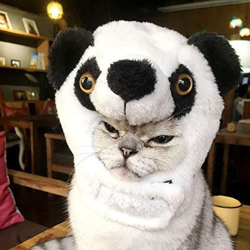 FOONEE Katze Halloween Kostüm SAMT Hut süß Tierform Design Perücke Cosplay Halloween Party Kleid Kostüm für Kleine Katzen oder Hunde Verkleiden Panda