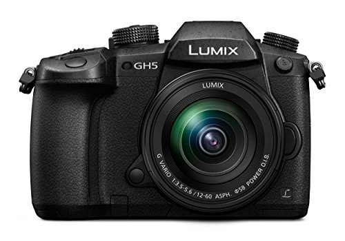 Panasonic Lumix GH5 - Cámara digital de 20,3 Mpx Full HD