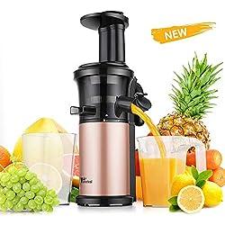 Amzdeal Extracteur de Jus de Fruits et Légumes - Slow Juicer Silencieux Sans BPA Système Anti-Gouttes Anti-bouchage, Centrifugeuse à Jus à Rotation Lente avec Brosse de Nettoyage et Tasse de Jus