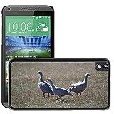 Grand Phone Cases Bild Hart Handy Schwarz Schutz Case Cover Schale Etui // M00141005 Cape Barren Gänse Gänse Tier // HTC Desire 816