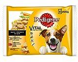 Pedigree Hundefutter Nassfutter Multipack mit Huhn, Rind und Gemüse in Sauce, Probiergröße (4 x 100 g)