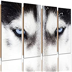 Feeby Frames, Cuadro de pared - 4 partes - Cuadro decorativo, Cuadro impreso, Cuadro Deco Panel, Tipo C, 120x100 cm, PERRO, ANIMALES, NATURALEZA, OJOS, BLANCO