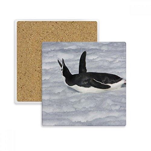 DIYthinker Wasser Schwarz Antarktis Pinguin-Bild-Quadrat Coaster-Schalen-Becher-Halter Absorbent Stein für Getränke 2ST Geschenk Mehrfarbig