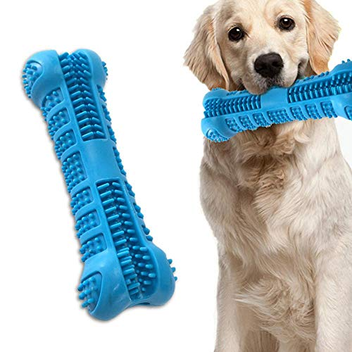 Hamkaw Hundezahnbürste, ungiftig, bissfest, Naturkautschuk, Kauspielzeug, Knochen, Zahnpflege, effektive Zahnreinigung für Hunde, Welpen, Haustiere, Mundpflege, Blau - Hunde Für Hund Knochen Mittelgroße