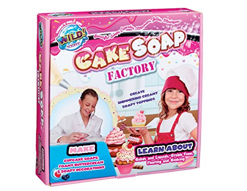 Wild Science Cake Soap Factory Toy