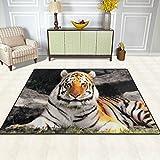 DOSHINE Alfombra de área con diseño de tigre silvestre, de poliéster, antideslizante, para salón, comedor, dormitorio, entrada de alfombrilla, decoración del hogar, multicolor, 5'x7'