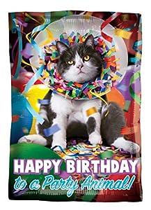 Amscan International 3637801 Avanti Happy Birthday Party Animal Foil Globo