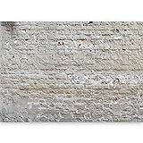 murando - Vlies Fototapete 500x280 cm - Größe Format XXL- Vlies Tapete - Moderne Wanddeko - Design Tapete - Ziegel Ziegelstein f-A-0507-x-b