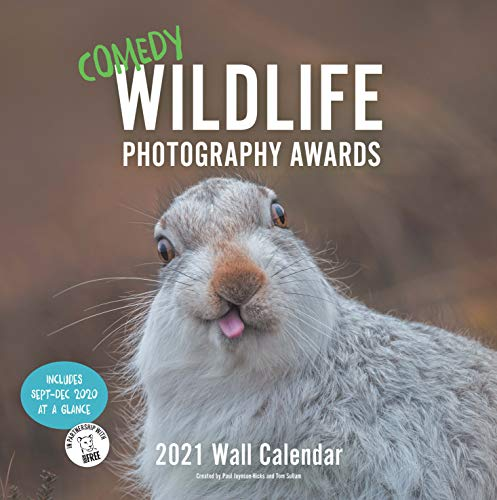 Comedy Wildlife 2021 Calendar: Funny Animal Monthly Calendar, Calendar With Photographs of Wild Animals Doing Funny Things