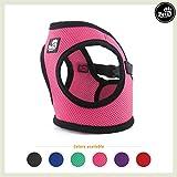 Pets&Partner Hundegeschirr Soft Air Mesh Weste in Verschiedenen Farben für Kleine bis mittelgroße Hunde, M, Hot Pink