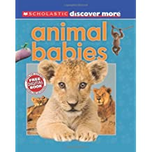 Scholastic Discover More: Animal Babies by Andrea Pinnington (2012-03-01)